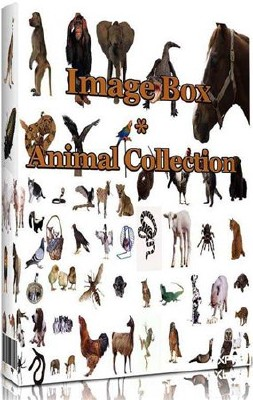 Image Box - Animal Collection