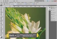 Новое в Photoshop CS5 - мини курс (2011) RUS