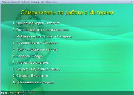 Самоучитель по работе с Интернет. Обучающий видеокурс (2011/RUS)