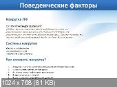 SEO-����� (PC/2011/RU)