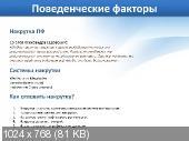 SEO-БОМБА (PC/2011/RU)