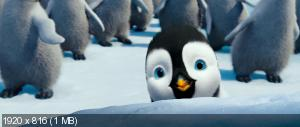 ����� ���� 2 / Happy Feet Two (2011) BluRay [3D/2D] + BD Remux + BDRip 1080p / 720p + HDRip 1400/700 Mb