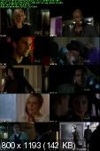 Ringer [S01E16] HDTV XviD-2HD