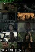 The Walking Dead [S02E13] HDTV.XviD-2HD