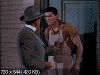 Дом восковых фигур / House of Wax (1953) DVDRip