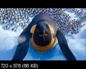 Делай ноги 2 / Happy Feet Two (2011) DVDRip