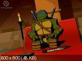 Черепашки Ниндзя. Антология / Teenage Mutant Ninja Turtles. Anthology (2003-2007/RUS/ENG)